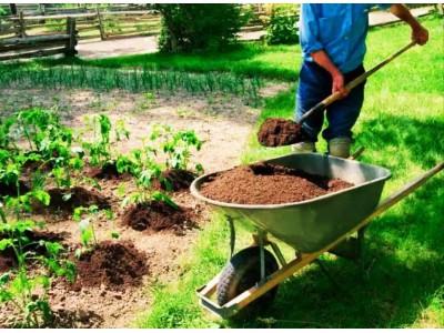 Садово-строительные тачки и аксессуары